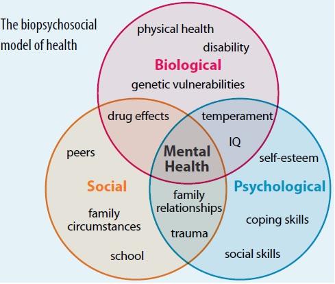 The biopsychosocial model of health diagram